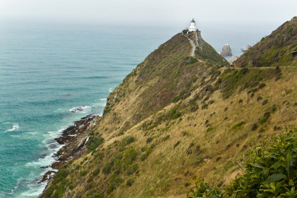 Nugget Point - 1