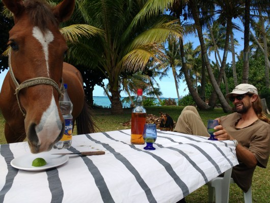 Alex's lunch date with Doir the horse. Another photo from Jack - thank you!