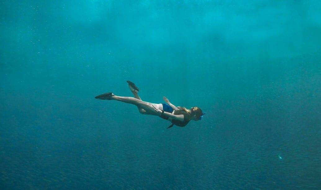 Le plaisir de plonger
