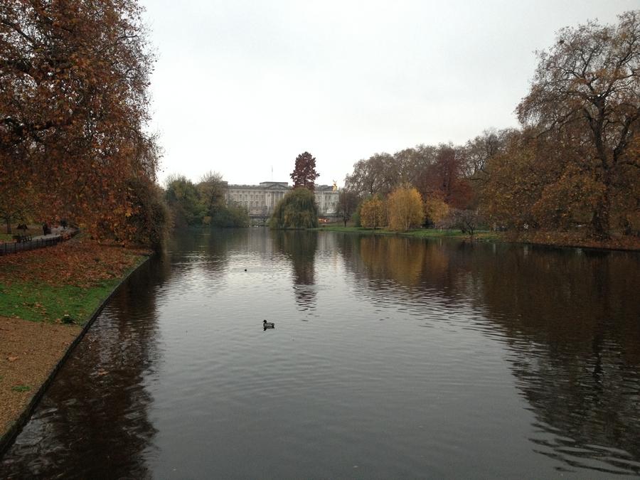 Buckingham Palace depuis St James Lake - Londres, Angleterre