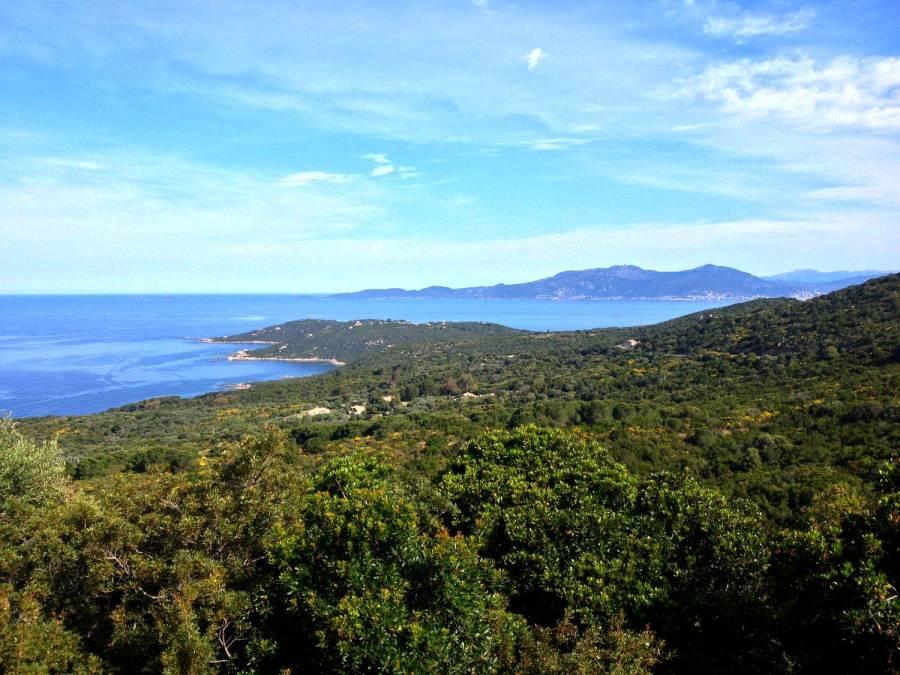 Superbe vue depuis Coti-Chiavari - Corse
