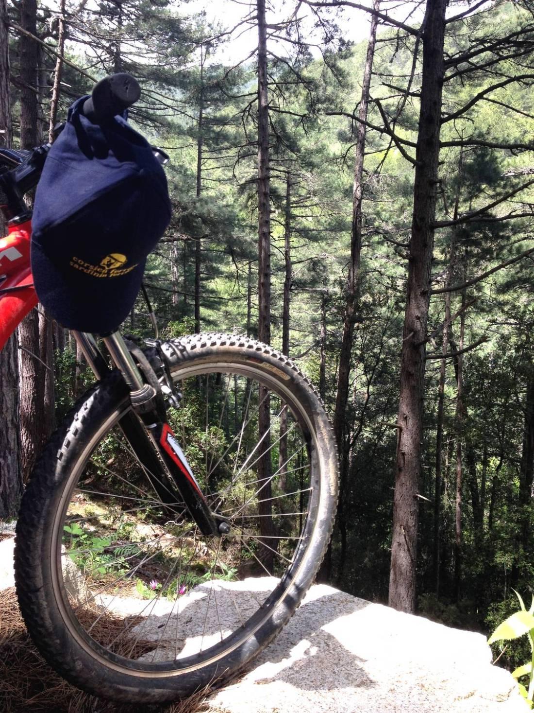 Mountain bike trek - Ghisoni, Corsica