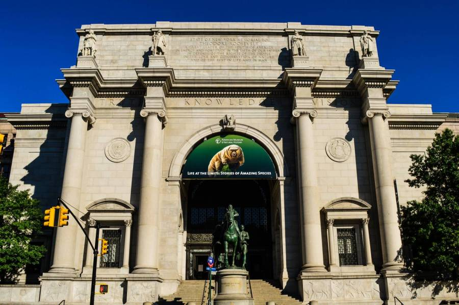 Le Museum d'Histoire Naturelle - New York, Etats-Unis