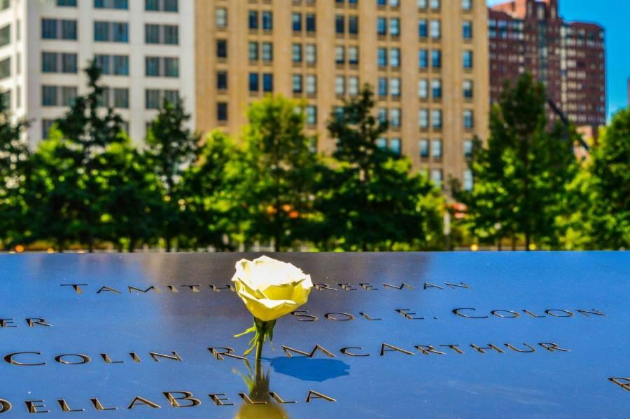 Un rose blanche au 9/11 Memorial - New York, Etats-Unis