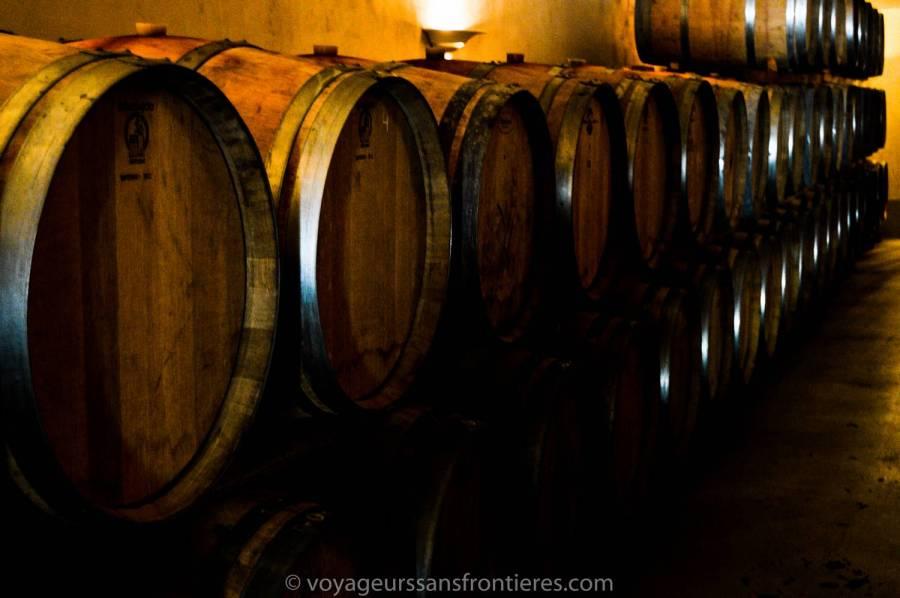 Des barriques de vin pendant le Haut Lirou Wine Tour - Saint Jean de Cuculles, France