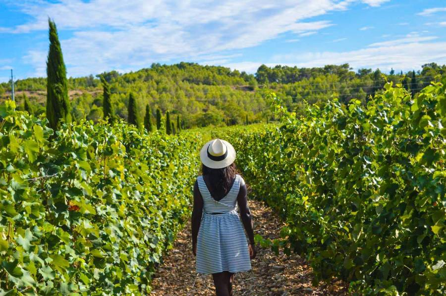 Nath during the Haut Lirou Wine Tour - Saint Jean de Cuculles, France
