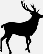 Cerf silhouette