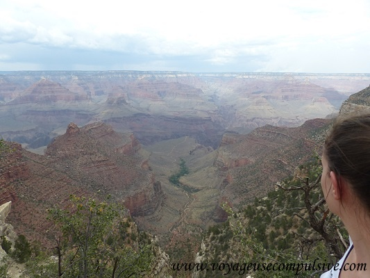 Vue sur le Grand Canyon depuis Bright Angel Lodge