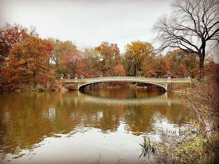 Bow Bridge, le plus long pont de Central Park.