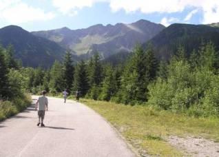 Lesná cesta Roháčska dolina