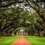 Tour Oak Alley Plantation, New Orleans, Louisiana