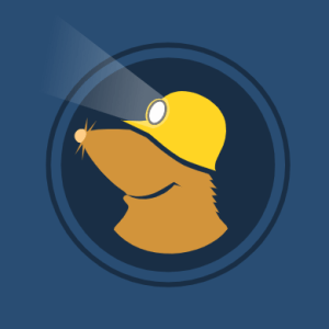 Mullvad VPN for PC