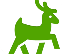 Reindeer VPN For PC
