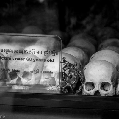 Killing Fields: Skulls