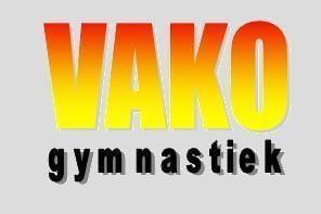 logo vako gym