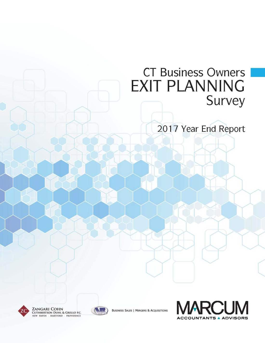 CT Business Owner Survey