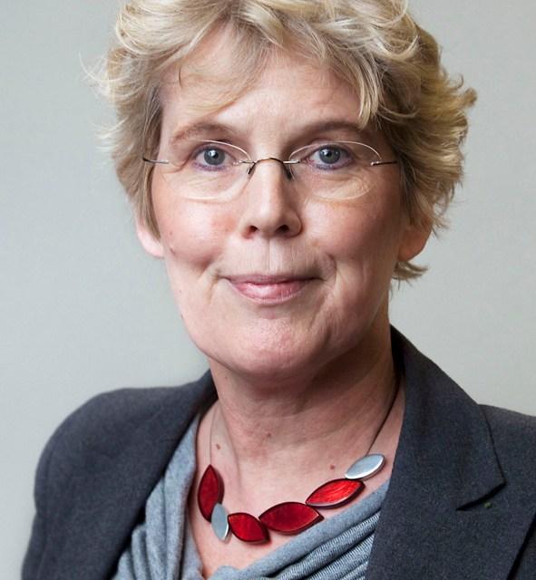 Heleen Zorgdrager hoogleraar