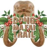 วิ่ง Dongmafai Trail 2019