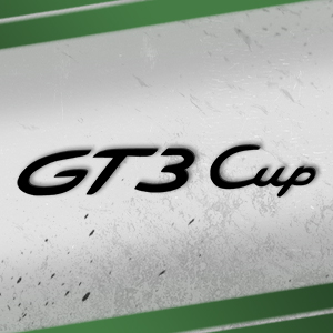 Porsche Cup