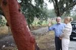 По словам Руя Оливейры,  следующий урожай пробки этот дуб даст в 2020 году