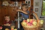 Прошлый год был яблочный