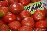 Астурийский сорт помидоров. Рынок Эль Фонтан, Овьедо