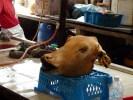 В малайзийской кухне все части животного идут в пищу. Рынок в Куала-Лумпуре