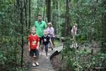 На пути к Большому Дереву