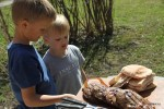 Внуки проявляют живой интерес к приготовлению обеда