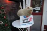 В год овцы не потерял свою актуальность голландский яблочный пирог