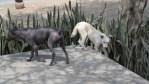 Дрвняя порода лысых перуанских собак