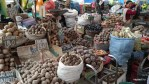 На каждом рынке в Перу продают десятки разных видов картофеля
