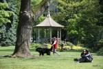 Воскресная погулка в Английском парке, Женева