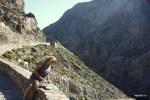Ущелье на пути в Плакиас, Крит