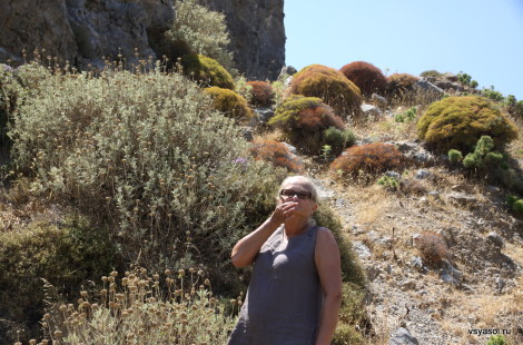 Ароматы горных трав: дорога из Ретимно в Плакиас. Крит