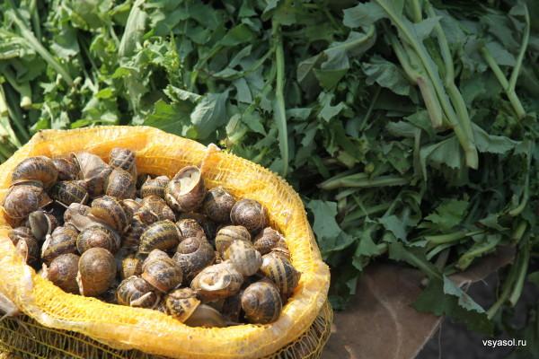 Улитки продают вместе с зеленью на уличном рынке в Ханье. Крит