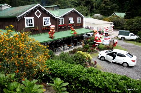 Финка Лерида в Бокете, Панама