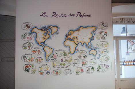 В Грасс доставляют ароматные цветы, плоды и листья со всего мира. Компания Фрагонар. Фото: Анатолий Мирюк