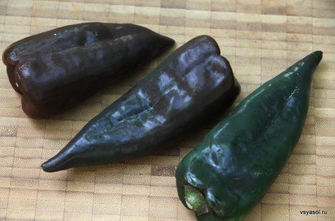 Мексиканский перец poblano