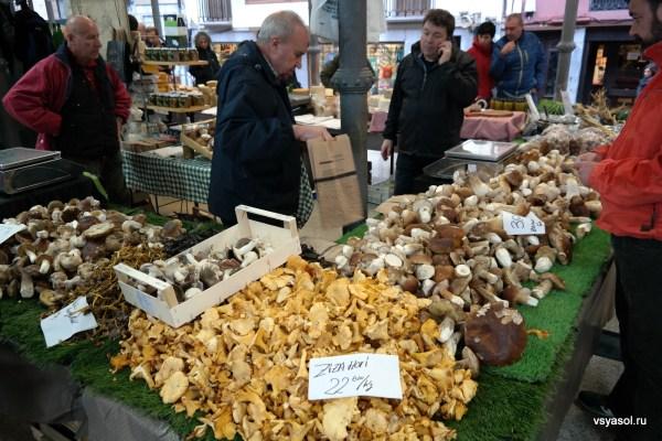 Ноябрь в Стране Басков - сезон грибов