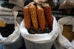 Такую кукурузу выращивают в Толосе