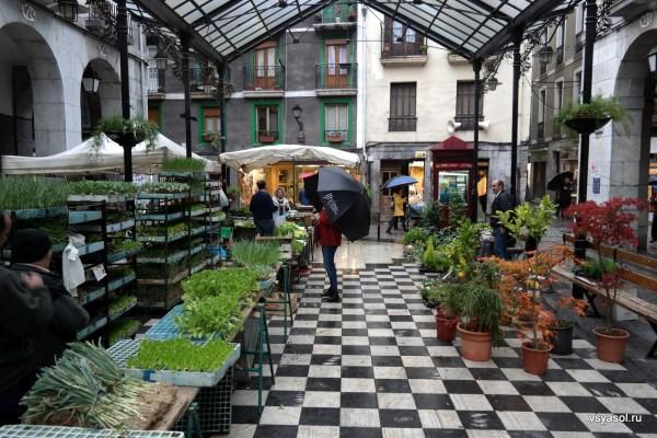 Цветочный рынок в Толосе