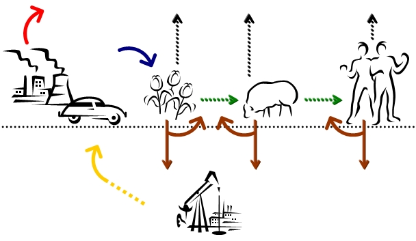 The Carbon Cycle :: Biological and Geological