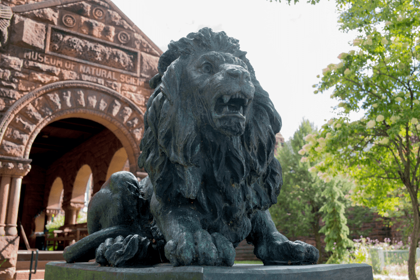 Image of one of the lion statues at Fairbanks Museum