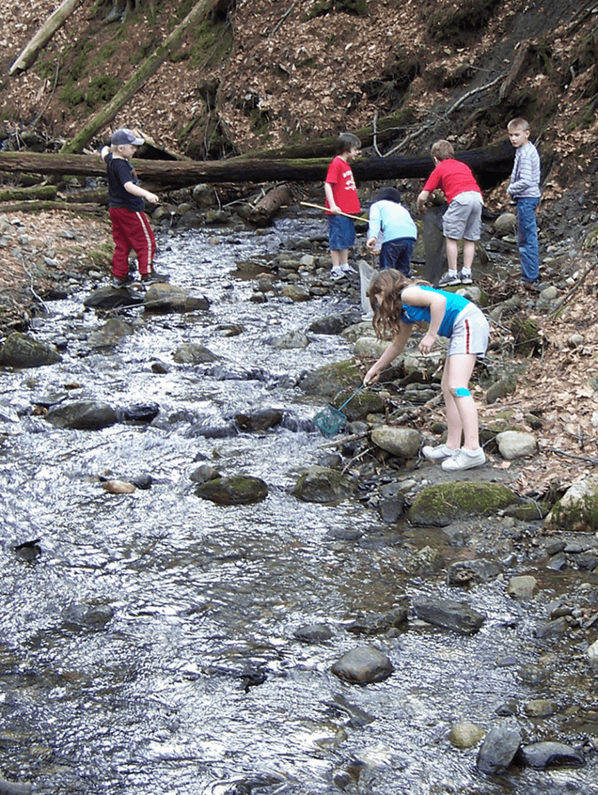 Image of children exploring a stream