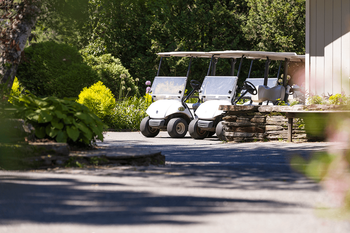 Image of golf carts at Lake Morey Resort