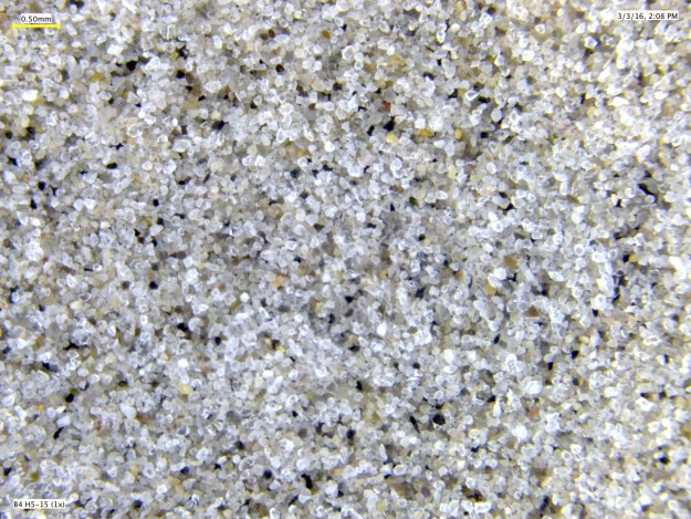 Stereoscope image of Oligocene sand from Newfoundland Ridge