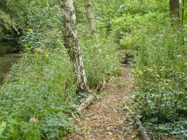 Beheer en onderhoud van de Bostuin