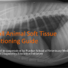 VUE Small Animal Positioning Guide Soft Tissue