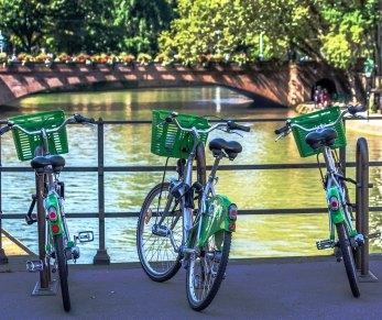 Bicis en Estrasburgo Foto: ©depositphotos/Moskwa